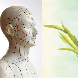 Naturheilkunde/Akupunktur